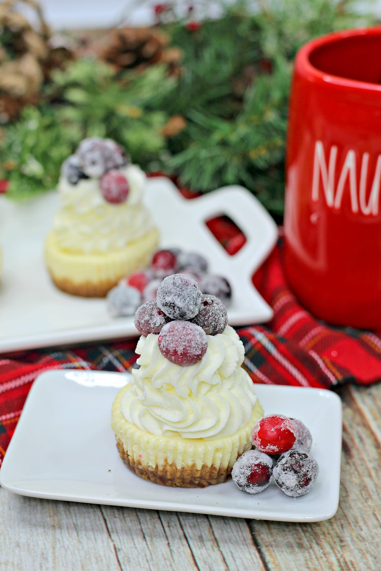 frosted cranberry topped mini cheesecake